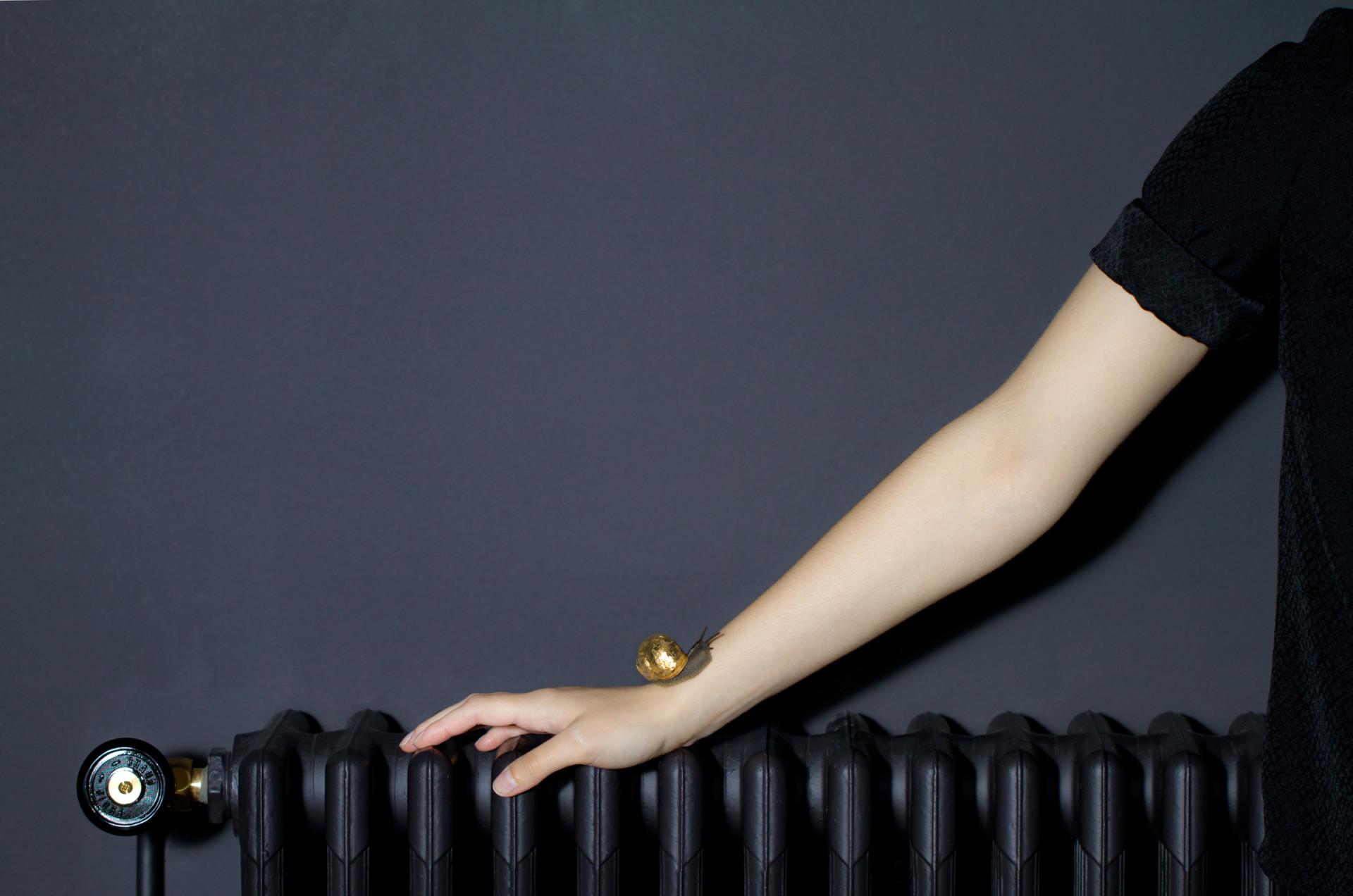 Amélie J. Nivet escargot