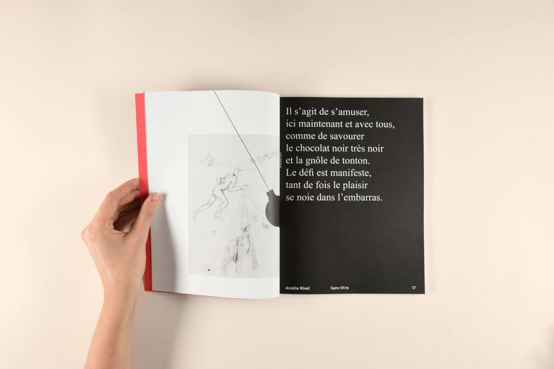 Amélie J. Nivet gros gris
